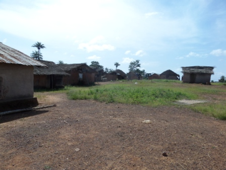 Homes that lost all of its inhabitants to ebola lay in ruin in Zango's Town
