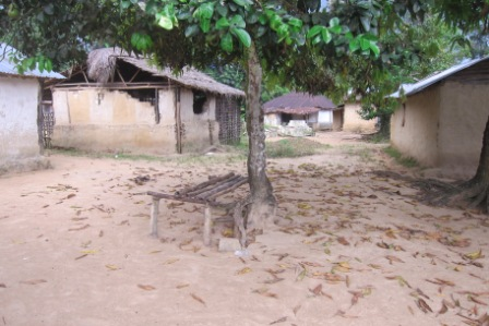 An entire quarter in Joe Blow Town wiped out by ebola